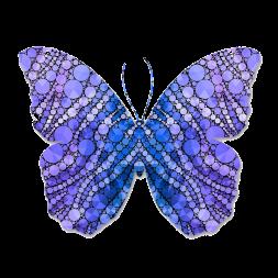 butterfly-1073709_960_720