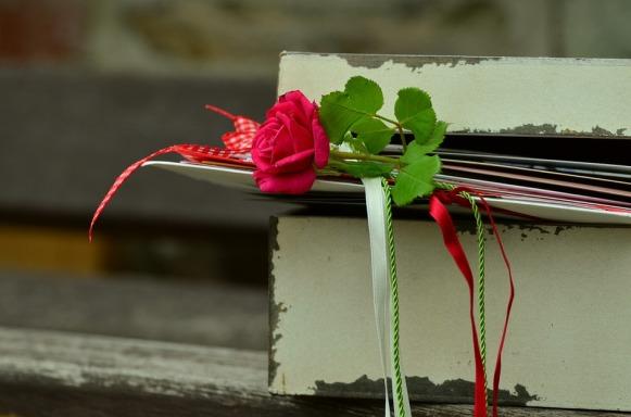 rose-889561_960_720